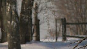 De winter bevroren rivier en banken omvat met sneeuw stock videobeelden
