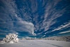 De winter bij de bergen van het Erts Royalty-vrije Stock Afbeeldingen