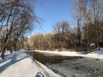 De winter bij het park dichtbij de rivier Royalty-vrije Stock Afbeeldingen