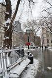 De winter bij het Park van het Stadhuis in NYC Royalty-vrije Stock Foto