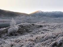 De winter bij Nauwe vallei Garry, Schotland Stock Foto's