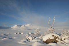 De winter bij Zwarte zet op Stock Foto