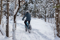 De winter Biking in het Bos Stock Afbeelding