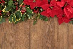 De winter Bloemengrens Stock Foto's
