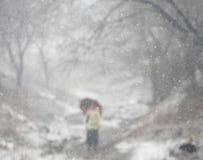 De winter bokeh 3 Stock Afbeeldingen