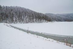 De winter in bos bevroren meer Royalty-vrije Stock Afbeeldingen