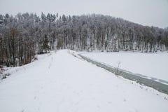 De winter in bos bevroren meer Royalty-vrije Stock Foto's