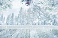 De winter bosachtergrond Stock Afbeeldingen