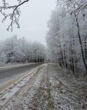 De winter bosachtergrond royalty-vrije stock afbeeldingen