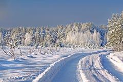 De winter boslandschap Stock Afbeelding