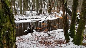 De winter bosscène Skaralid stock video