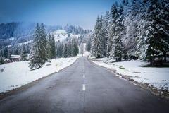 De winter in Brasov Roemenië Stock Foto's