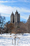 De winter in Central Park Royalty-vrije Stock Afbeeldingen