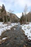 De winter in Colorado Stock Afbeelding