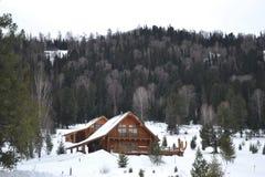 De winter in de bergen Stock Afbeelding