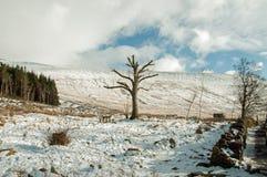 De winter in de Brecon-bakens Royalty-vrije Stock Foto's