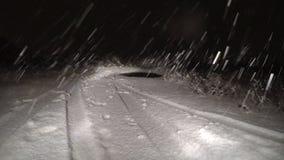De winter - de Eerste sneeuw falled over nacht op het gebied stock videobeelden