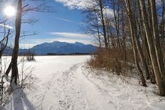 De winter in de heide Royalty-vrije Stock Foto's
