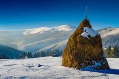 De winter in de Karpaten Royalty-vrije Stock Fotografie