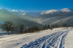 De winter in de Karpaten Stock Fotografie