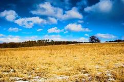 De winter - de lenteweide Royalty-vrije Stock Afbeelding