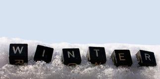 De winter in de sneeuw Stock Foto's
