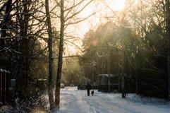 De winter in de stad Stock Fotografie