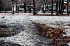 De winter in de stad Stock Foto