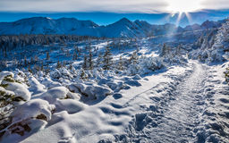 De winter in de Tatras-Berg Stock Afbeeldingen