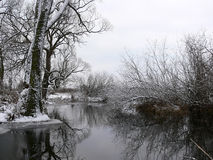 De winter door de rivier Stock Afbeelding