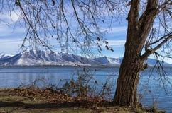 De winter door het meer in Kastoria, Griekenland Royalty-vrije Stock Afbeelding