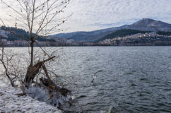 De winter door het meer in Kastoria, Griekenland Royalty-vrije Stock Foto