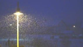 De winter in Duitsland, sneeuw valt stock videobeelden
