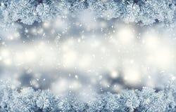 De winter en Kerstmisgrens De behandelde vorst van de pijnboomboom takken in sneeuwatmosfeer Royalty-vrije Stock Afbeeldingen