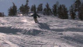 De winter en sneeuw stock video