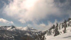 De winter en sneeuw stock videobeelden