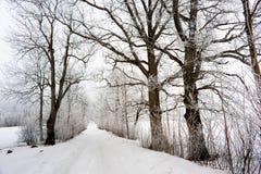 De winter in Europa Royalty-vrije Stock Afbeeldingen