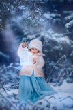 De winter fairytale stock fotografie