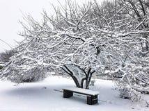 De winter fairytale in het centrum van de stad stock fotografie