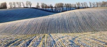 De winter field schilderachtig heuvelig gebied stock foto's