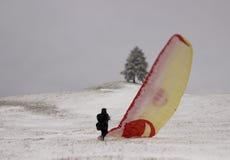 De winter fligh Stock Afbeeldingen