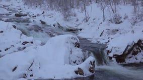 De winter Forest River bij Schemer Langzame Motie en Naadloze Lijn stock footage