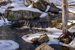 De winter Forest Waterfall Stock Foto's