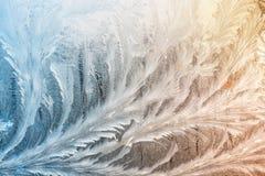 De winter frostwork op vensterglas stock fotografie
