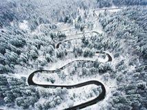 De winter gebogen windende die weg in het bos in sneeuw wordt behandeld Stock Foto's