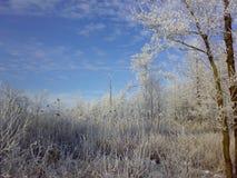 De winter in het dorp stock foto's