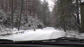 De winter het Drijven - de Winterweg stock video