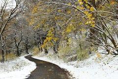 De winter in het Nationale Park van Ojcà ³ w, Polen Stock Fotografie