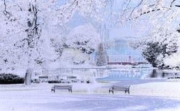 De winter in het park royalty-vrije illustratie