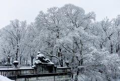 De winter in het park Sneeuw bevroren Bomen met Oud Standbeeld die op een balustrade in voorgrond liggen royalty-vrije stock fotografie